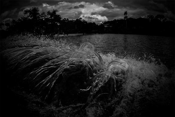 Die Liebe zum Wasser ist unerschütterlich, Nr.2, 2015, C-Print, 42x63 cm