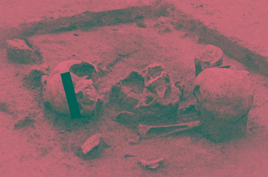 Herxheim / Ausgrabung / Kannibalismus